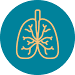 CRCF_Areas_of_focus_gastroenterology